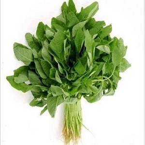 Picture of Organic Thotakura 3nos